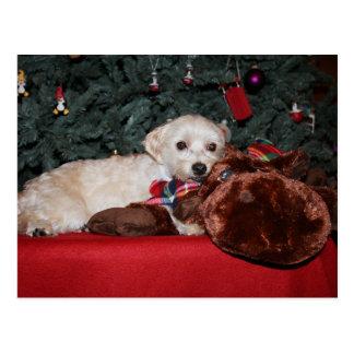 Postal dulce del navidad del perrito