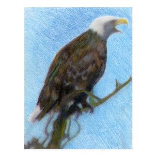 Postal Eagle calvo que grita en un árbol