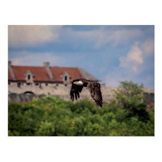 Postal Eagle calvo que pasa el fuerte Ticonderoga