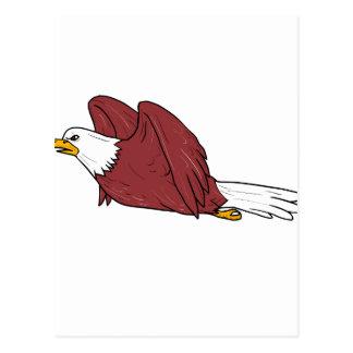 Postal Eagle calvo que vuela el dibujo animado