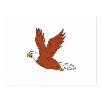 Postal Eagle enojado que vuela el dibujo animado