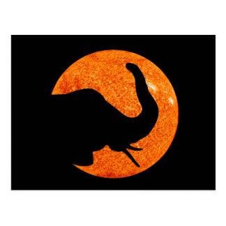 Postal Eclipse solar del perfil del elefante