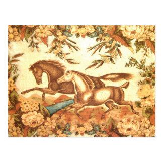 Postal ecuestre 1 del caballo