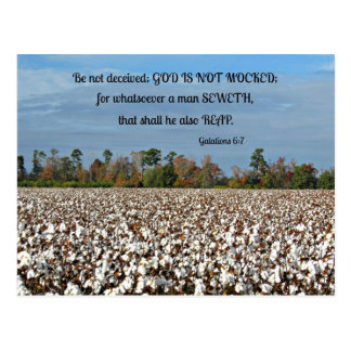Postal El 6:7 de Galatians no se engañe, dios no se