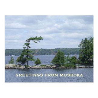 Postal El árbol doblado, Muskoka, Ontario, Canadá