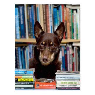 Postal El bibliotecario