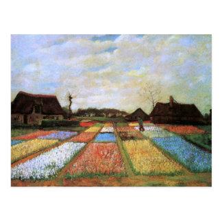 Postal El bulbo coloca la bella arte de Holanda (F186)