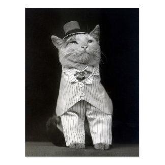 Postal El Cat apuesto, 1906