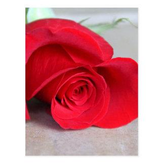 Postal El color del amor