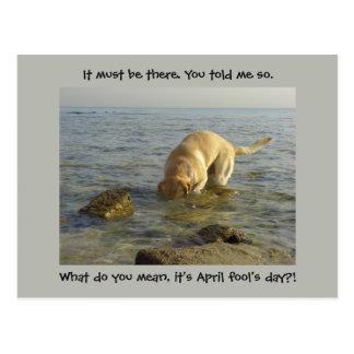 Postal El día del inocente - Labrador torpe