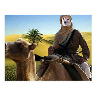 Postal El Fox es Lorenzo de Arabia