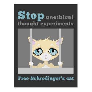 Postal El gato de Schrodinger libre