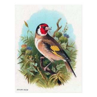 Postal El Goldfinch