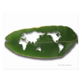 Postal El mapa del mundo gusano-comido de la hoja