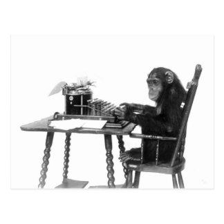 Postal El mecanografiar del chimpancé