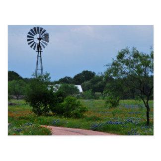 Postal El molino de viento en los Wildflowers