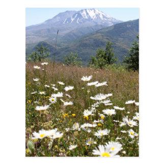 Postal El Monte Saint Helens