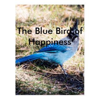 Postal El pájaro azul de la felicidad