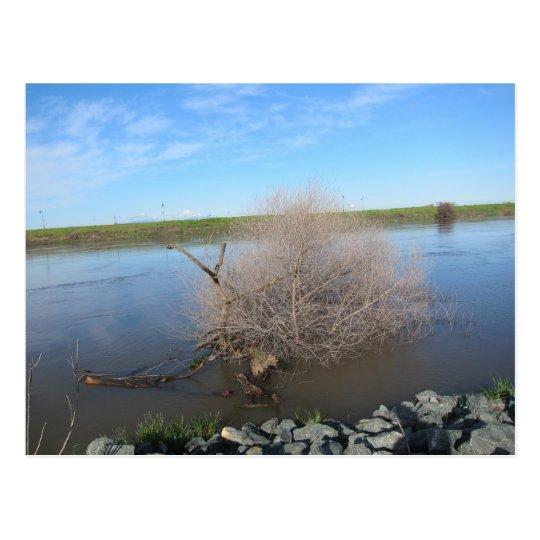 Postal El río San Joaquin, Lathrop, CA 2