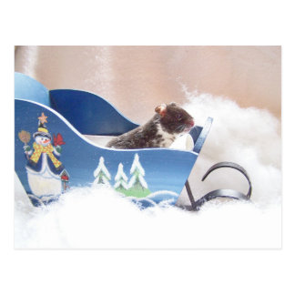 Postal El sledding de Noah del hámster