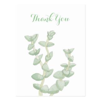 Postal El Succulent verde le agradece