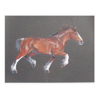 Postal El trotar del caballo de proyecto