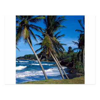 Postal El verano tropical de la isla agita St Lucia