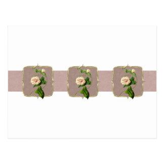 Postal El vintage rosa claro florece de par en par