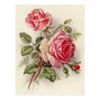 Postal elegante color de rosa floral del vintage