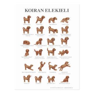 Postal Elekieli/Kortti de Koiran