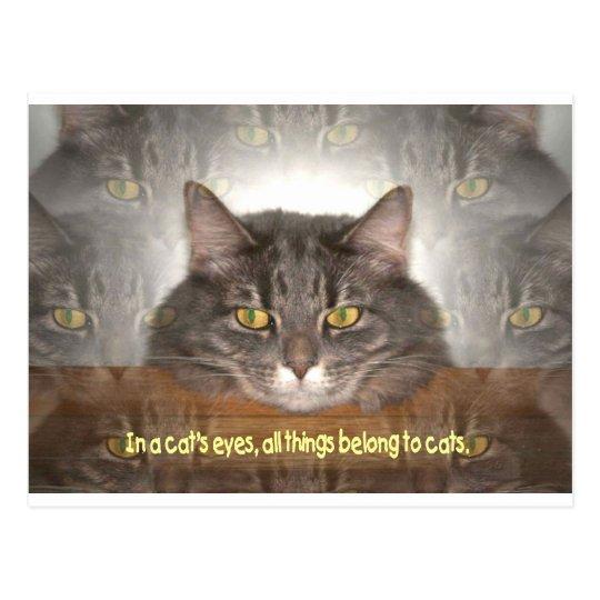 Postal En los ojos de un gato.
