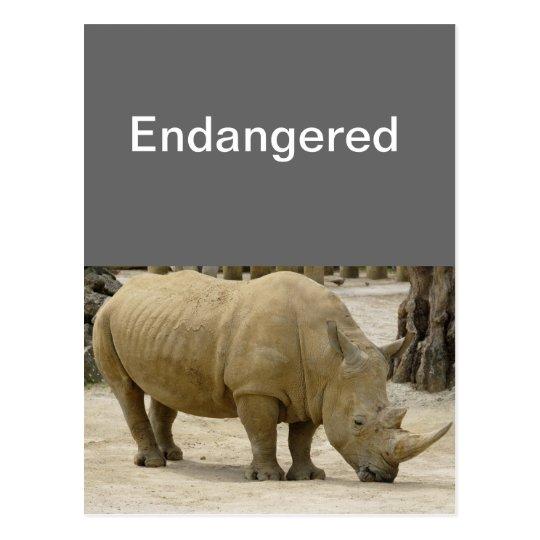 Postal en peligro Rhinos