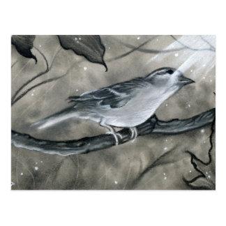 Postal encantada de la luz del árbol del pájaro