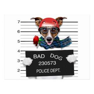 Postal Enchufe divertido Russell, perro del Mugshot