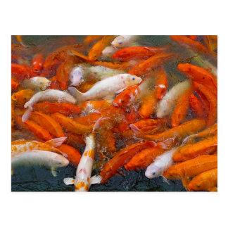 Postal Enjambre de los pescados del oro