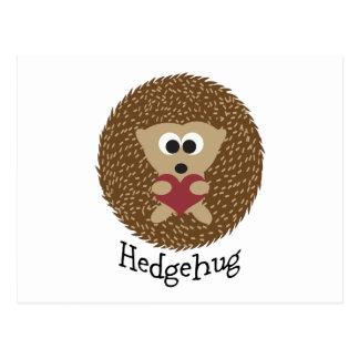 Postal Erizo de Hedgehug