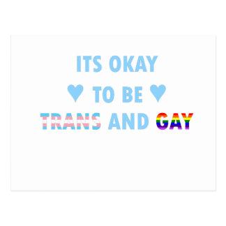 Postal Es aceptable ser el transporte y el gay (v2)
