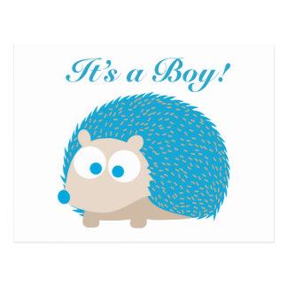 Postal ¡Es un muchacho! Erizo