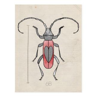 Postal Escarabajo rojo de la serie el | del insecto