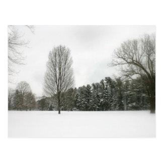 Postal Escena del invierno