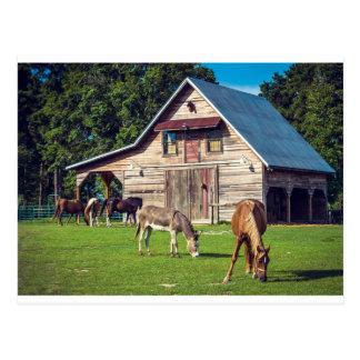 Postal Escena hermosa de la granja con los caballos y el
