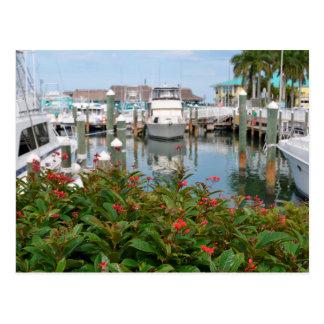 Postal escena rosada de la Florida del puerto deportivo