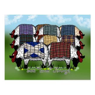 Postal escocesa de las ovejas - vea la oveja Jimmy