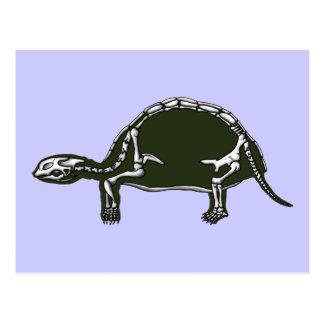 Postal esqueleto de la tortuga