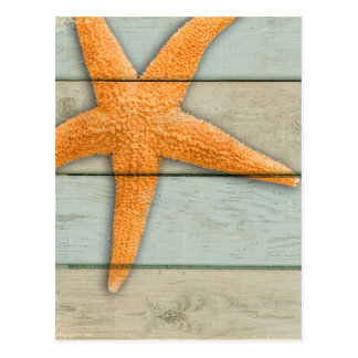 Postal Estrellas de mar anaranjadas