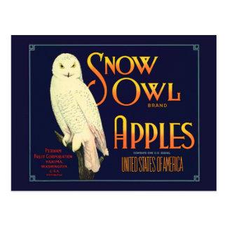 Postal Etiqueta de las manzanas del búho de la nieve del