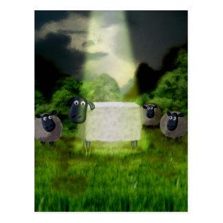Postal extranjera del experimento de las ovejas