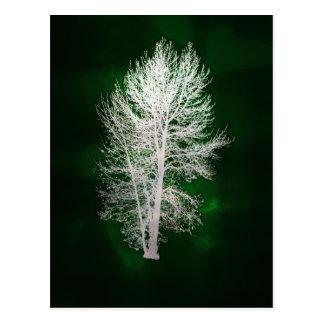 Postal falso-metálica verde del árbol