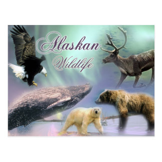Postal Fauna de Alaska