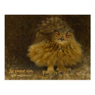 Postal Fauna del búho CC0710 de Bruno Liljefors Eagle